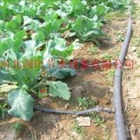 滴水软管 PE管 河南滴灌管供不应求  霈泽多种 滴灌管